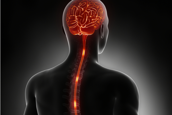 What is a Spinal Cord Stimulator?